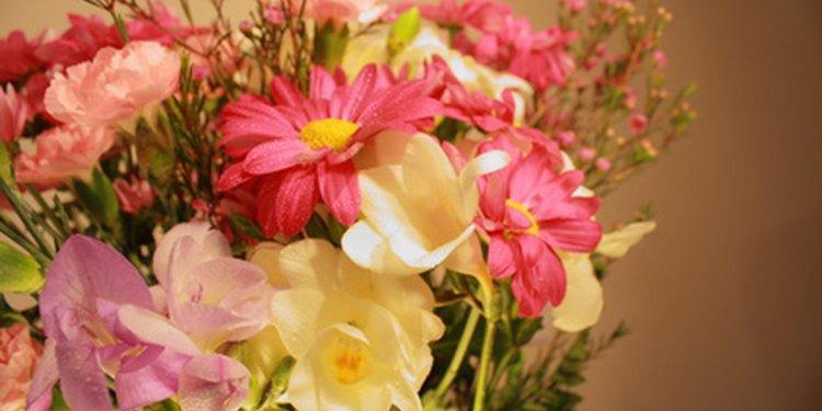 A List of Flower Dye Colors