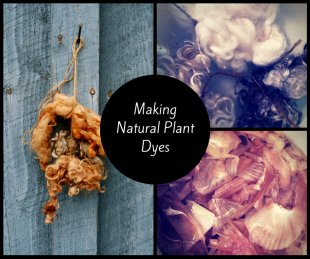 Making All-natural Plant Dyes 2
